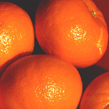 タンジェリン(Tangerine)
