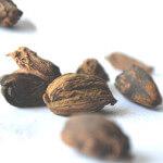 【アロマ】ナツメグ精油<br />-植物の特徴・期待される効果効能とは?
