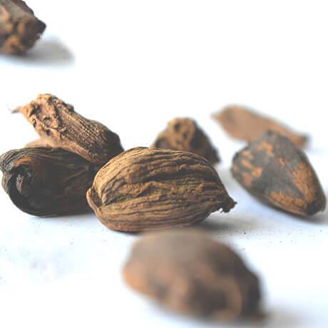 ナツメグ(Nutmeg)
